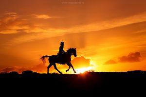 Fotoshoot silhouette rijfoto met zonsondergang
