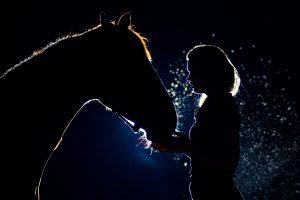 Bijzondere paardenfoto van fotoshoot