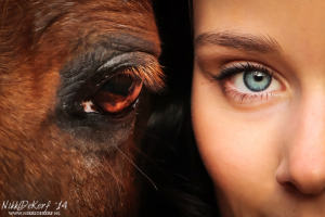 Voorbeeld fotoshoot paardenoog naast mensenoog
