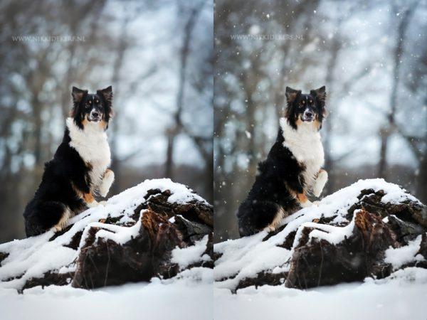 Nepsneeuw maken photoshop voorbeeld sneeuw overlays