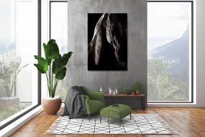Voorbeeld paardenfoto aan de muur