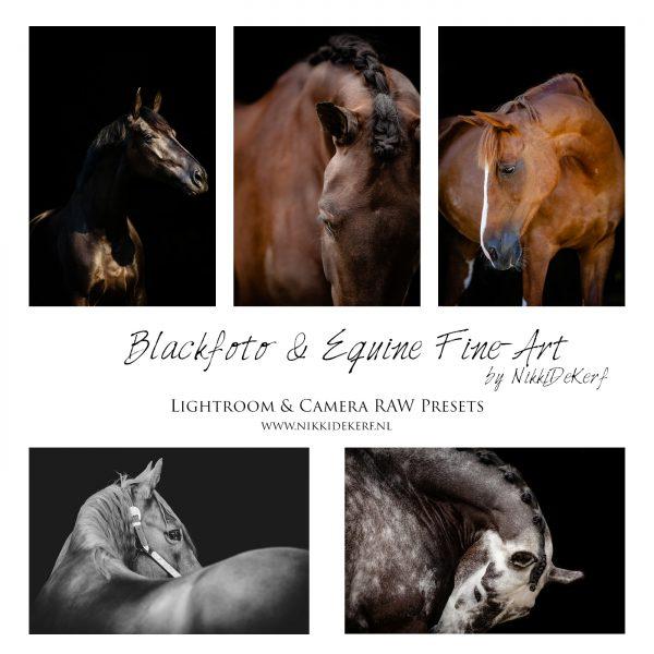 Voorbeelden nabewerking blackfoto met Lightroom en Photoshop Camera RAW Presets