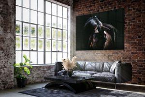 Blackfoto zwart paard equine fine-art voorbeeld mockup