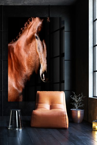 Paardenfotograaf kunst fine-art foto